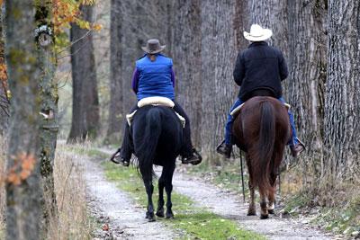 Allgäu Trail Ausritt mit Missouri Foxtrotter